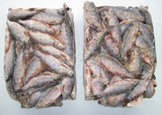 Продам рыбу свежемороженную лещь, плотву, густеру