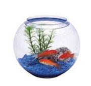 стеклянные аквариумы оптом