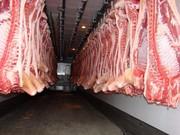 Мясо Свинины Оптом от 10 тонн от изготовителя,  Львов