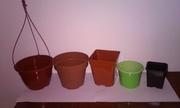 Вазоны, средства защиты растений