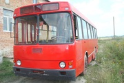 Автобус ЛАЗ 42021