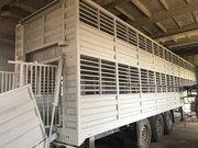 Продам скотовоз SCHMITZ- двухэтажный полуприцеп для перевозки животных