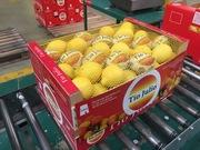 Продаем лимоны от призводителей