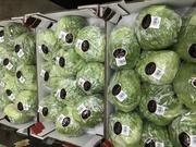 Продаем салаты от производителей